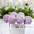 Lilac cake pops in white ceramic jar. White and pink daisies — Stock Photo #24949845