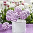 Lilac cake pops in white ceramic jar. White and pink daisies — Stock Photo #24949867