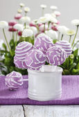 Lilac cake pops in white ceramic jar. White and pink daisies — Stock Photo