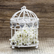 Birdcage with flowers inside on rustic wooden background — Stock Photo