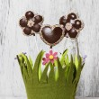 Chocolate cake pops in flower shape, lavishly decorated — Stock Photo