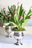 Stunning huge bouquets of pink tulips in silver antique vases — Stock Photo