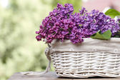 Lilac flowers in white wicker basket on wooden rustic table in s — Stock Photo