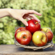 Basket of red ripe apples on a wooden table in the garden — Stok fotoğraf