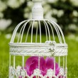 Birdcage with pink flowers inside in fresh spring garden — Stock Photo