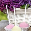 Pastel colors cake pops on wooden table. Fresh lilac flowers in — Stock Photo #26226053