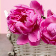 Royalty-Free Stock Photo: Pink peony flower in white wicker basket