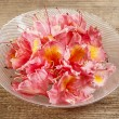 Azalea flowers in glass bowl on wooden background. — Stok fotoğraf #26543221
