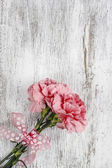 ροζ λουλούδι γαρίφαλων σε άσπρο φόντο. κενό διάστημα σε ξύλινα — Φωτογραφία Αρχείου