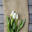 Fresh white tulips on hessian canvas. — Zdjęcie stockowe