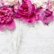 Stunning pink peonies on white rustic wooden background. Copy sp — Stock Photo #26796803