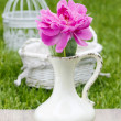 Single pink peony flower in white ceramic vase on fresh green — Stock Photo
