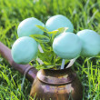 Cake pops on green grass in spring garden on sunny day — Stock Photo