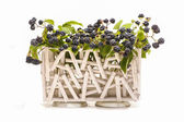 Blackberry fruit growing on branch isolated in wooden basket — Stock Photo