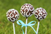 Chocolate cake pops on fresh green grass in a beautiful garden. — Stock Photo