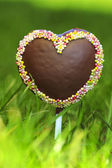 Chocolate cake pops in heart shape, lavishly decorated — Stock Photo