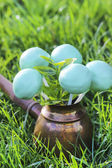 Cake pops on green grass in spring garden on sunny day — Foto de Stock