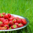 Silver bowl of strawberries on green grass in the garden. Select — Stock Photo