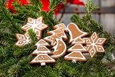 Peperkoek cookies op fir takken, decoratie van kerstmis — Stockfoto