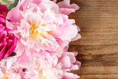 Stunning peonies on wooden background. Copy space. — Stock Photo
