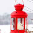 Red lantern hanging on the tree. Snowy morning in the garden. — Stock Photo