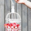 Birdcage with pink flowers inside, holding in beautiful hand — Stock Photo