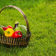 Basket of fruits and vegetables on green grass in the garden — Stock Photo