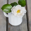 Rose in white jug on wooden table. Copy space — Stock Photo