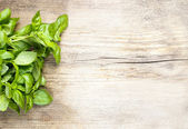 Basil leaves on wooden background. Copy space — Stock Photo