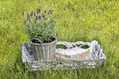 Lavender in grey basket and stack of old letters — Stock Photo