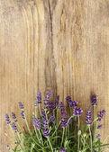 Lavendel auf hölzernen hintergrund. textfreiraum — Stockfoto
