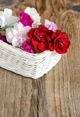 Red, pink and white carnation flowers in wicker basket on wooden — Stock Photo