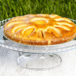 Stock Photo: Round apricot cake on cake stand. Garden party, selective focus
