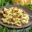 Traditional scrambled eggs with fresh chanterelle — Stock Photo #28444657