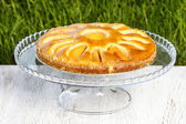 Round apricot cake on cake stand. Garden party, selective focus — Stock Photo