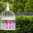 Birdcage with pink flowers inside, hanging on a branch in green, — Stock fotografie