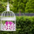 Birdcage with pink flowers inside, hanging on a branch in green, — ストック写真