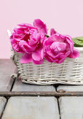 Pink peony flower in white wicker basket. Selective focus — Stock Photo