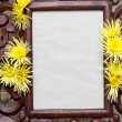 Wooden frame decorated with yellow chrysanthemums. Copy space — Stock Photo #29201071