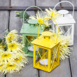 Colorful lanterns and yellow chrysanthemums. Beautiful colorful — Stock Photo