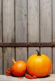 Zucche di halloween su fondo in legno — Foto Stock
