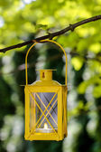 Yellow lantern hanging on branch. Garden party decor — Stock Photo