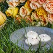 Floating candles in water, orange roses in the background. Aroma — Stock Photo #32730665