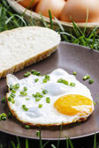 Breakfast on the grass. Fried egg on brown plate — Stock Photo