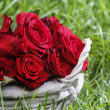 Basket of roses on green lush grass — Stock Photo