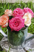 Colorful roses in silver watering can — Stockfoto