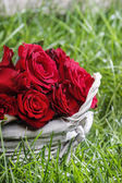 Cesta de rosas sobre la verde hierba exuberante — Foto de Stock