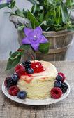 Round cake with fresh fruits — Stock Photo
