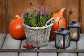 Red heather in wicker basket, pumpkins and lanterns on wood — Stock Photo