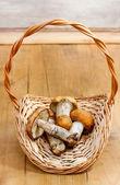 Basket of mushrooms. Autumn setting — Stock Photo